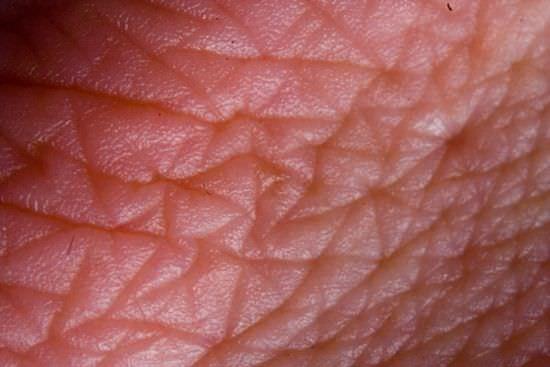 No hay nada mas profundo que tu piel